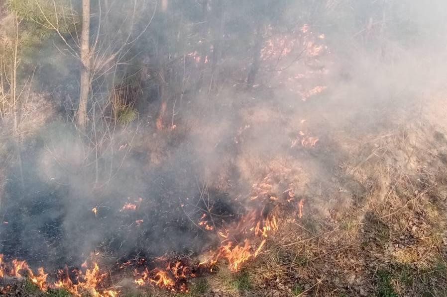 Пожар в Броварском районе
