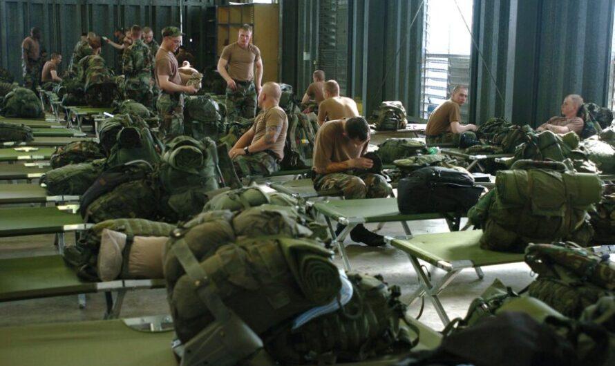 Кто такие военные трутни