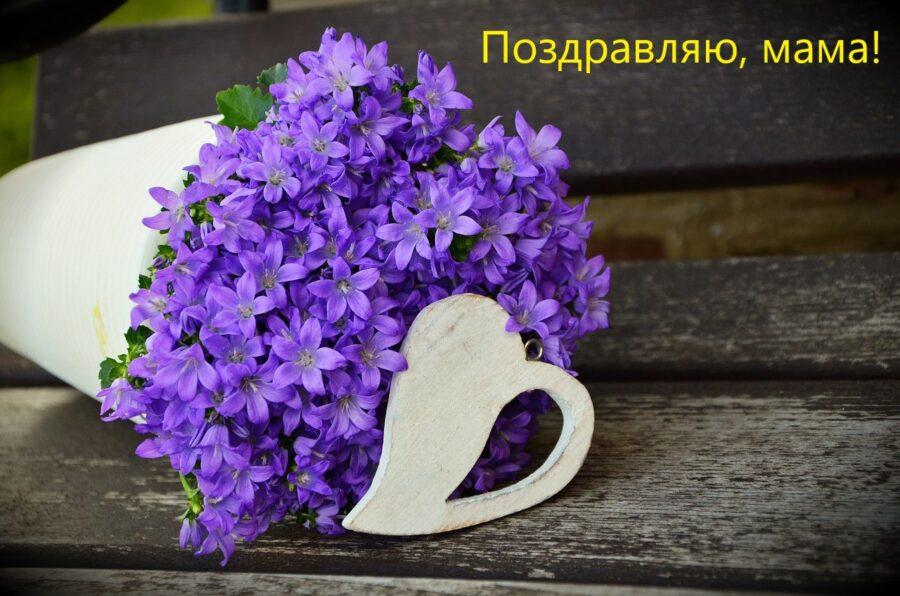 Изображение congerdesign с сайта Pixabay